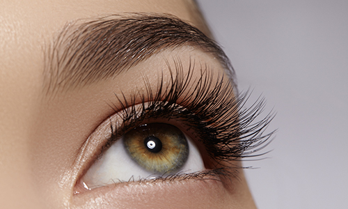 Eyelash & Eyebrow Tints in Chiswick With Chiswick Beautique